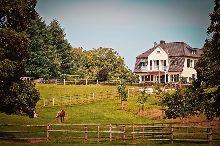 Rural South 2